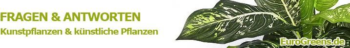 kunstpflanzen kaufen ber 850 artikel sofort verf gbar. Black Bedroom Furniture Sets. Home Design Ideas