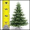 Tannenbäume 270cm