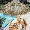 23. Palmendächer/ Sonnenschirme