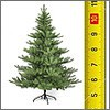 Weihnachtsbäume nach Größen