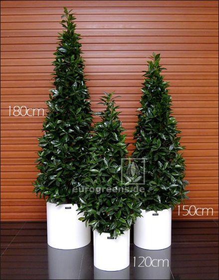 Kunstpflanze Naturstamm Lorbeerpyramide ca. 180cm