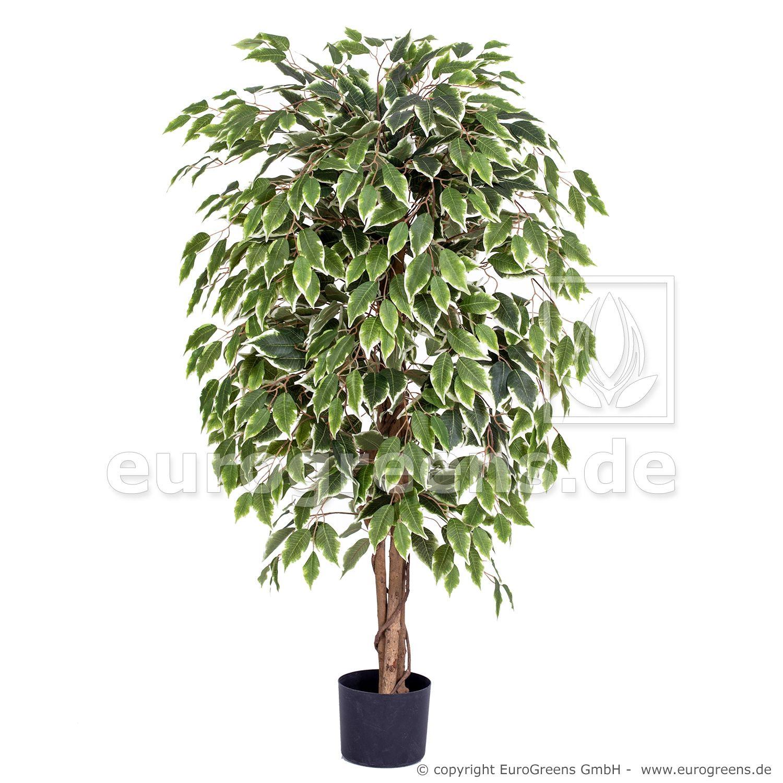 Kunstliche Ficus Exotica Ca 120cm