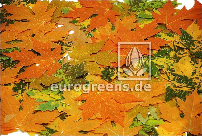 ca. 1.000 künstliche Herbstliche Ahornblätter