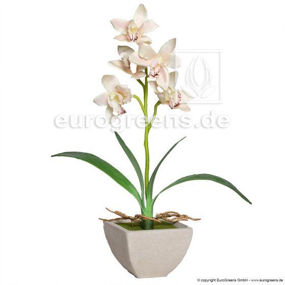 künstliche Cymbidium Orchidee ca. 50cm champagner