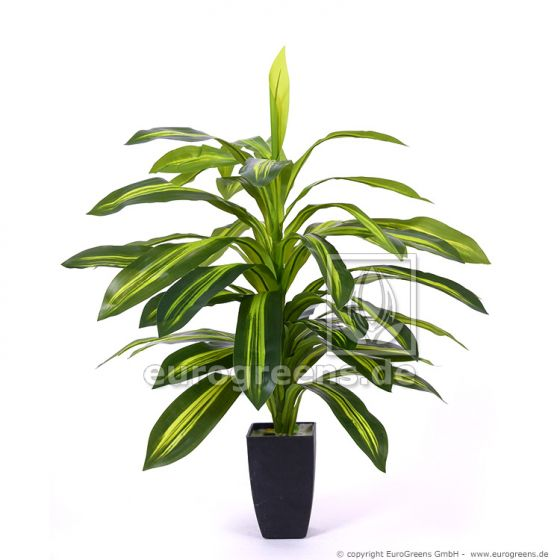 künstliche Dracaena Pflanze ca. 85cm