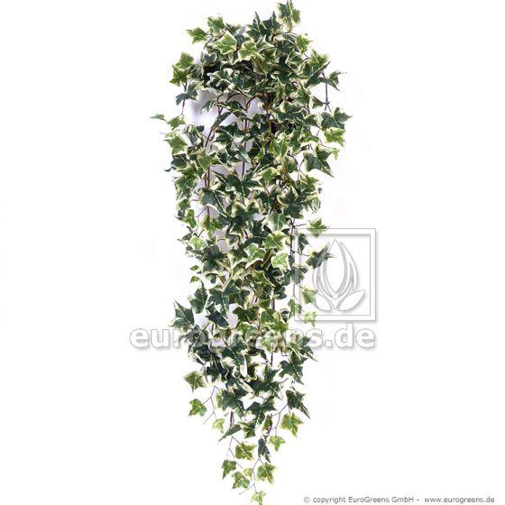 künstliche Holland Efeu Ranke ca. 70cm grün weiss (mit Einsteckstab/ ungetopft)