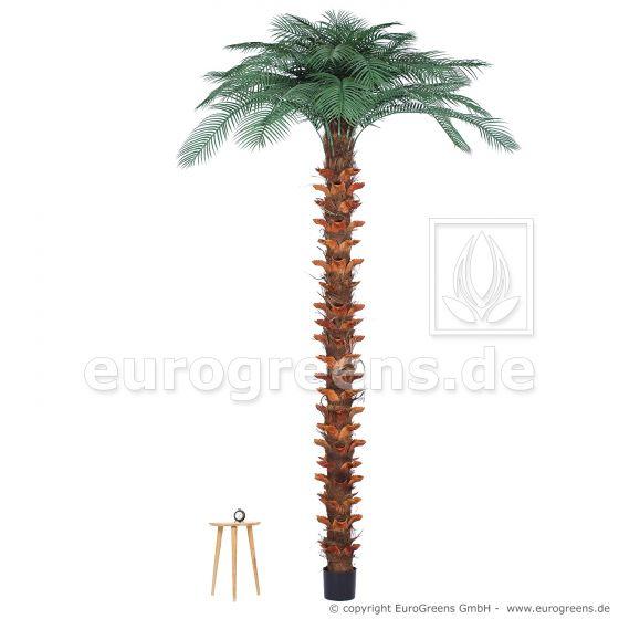 Kunstpalme wetterfest, künstliche Pindo-Palme ca. 300cm