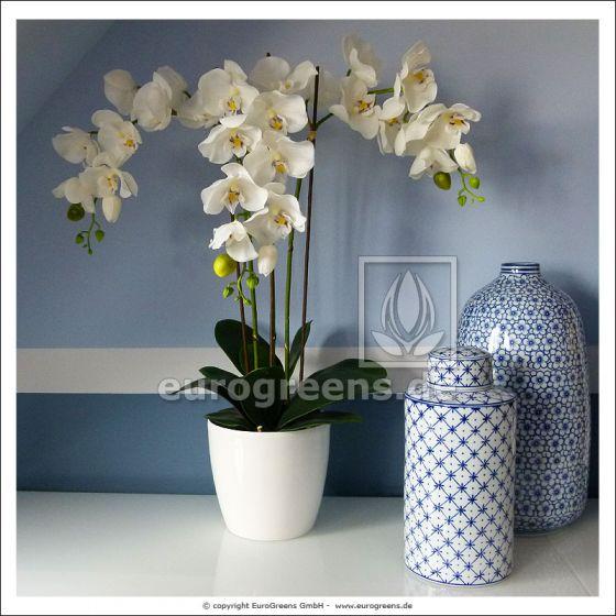 künstliche weiße Phalaenopsis Orchidee