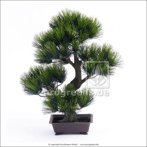 Kunstpflanze Latschenkiefer-Bonsai ca. 80cm