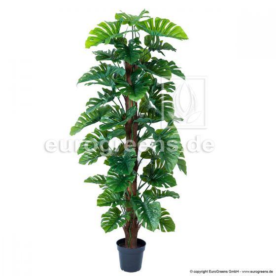 Kunstpflanze Monstera am Sisalstamm ca. 180cm