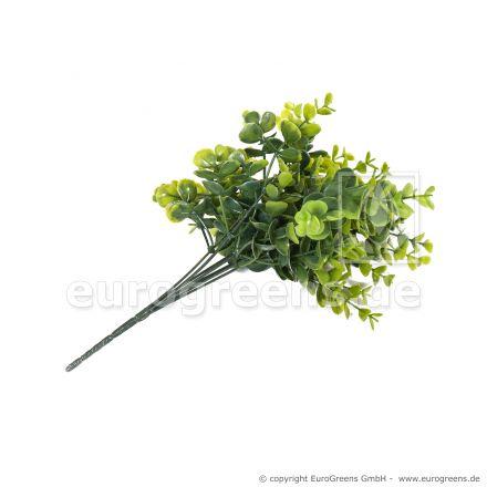 Buchs-Zweig 35cm mit 7 Zweigen