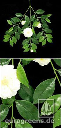 künstlicher Gardenien Blütenzweig mit weißen Blüten und Knospen