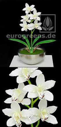 künstliche cremefarbene Cymbidium Orchidee ca. 50cm