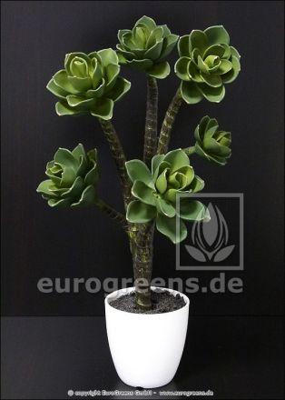 künstliche Echeveria 50-55cm