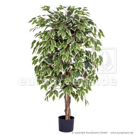 Kunstpflanze Ficus Exotica grün weiss ca. 120cm