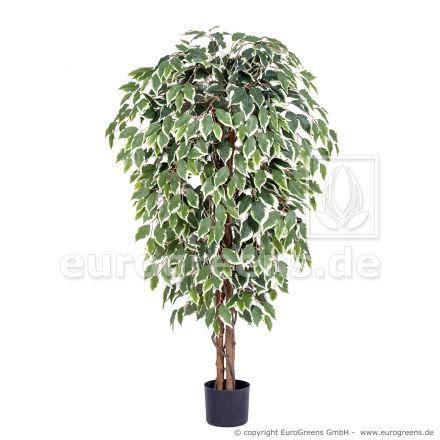 künstliche Ficus Exotica ca. 150cm