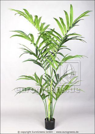 künstliche Kentiapalme ca. 180cm