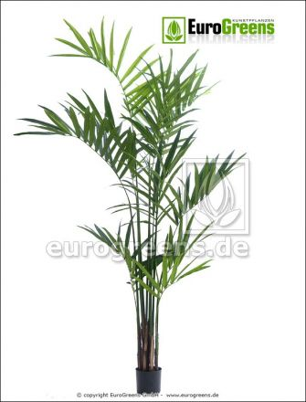 Kunstpalme: künstliche Kentiapalme ca. 210cm