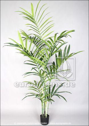 künstliche Kentiapalme ca. 220cm