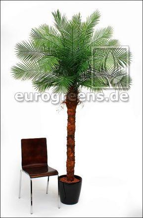 künstliche Phönix Palme ca. 210cm