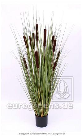 Kunstpflanze, 13 künstliche Rohrkolben im Topf ca. 140cm