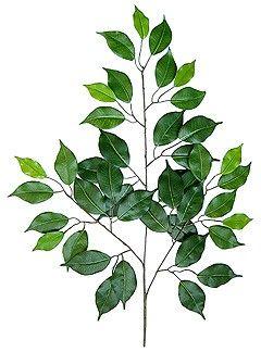 künstlicher Ficuszweig ca. 50cm lang grün