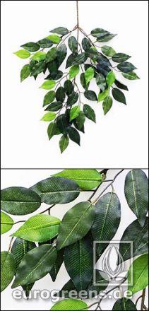 künstlicher Jade Ficus Zweig ca. 45cm