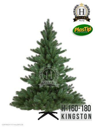 NEU Spritzguss Weihnachtsbaum Nordmanntanne Kingston ca. 210cm