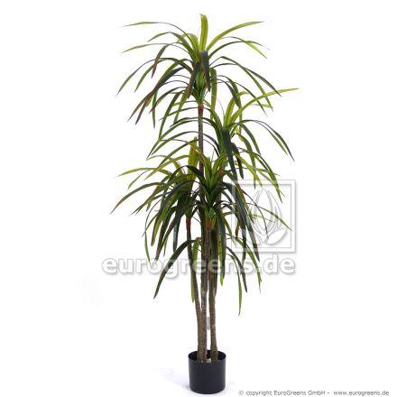 Kunstpflanze Dracaena Marginata ca. 155cm