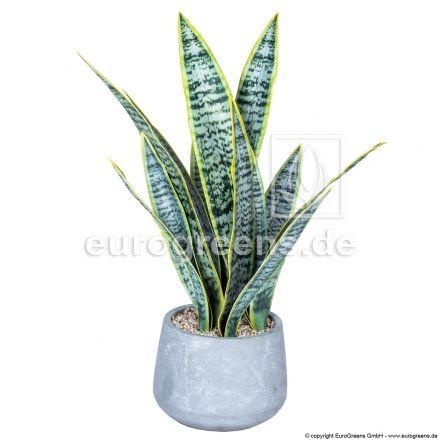 Kunstpflanze Sansevieria Tigrida ca. 50cm