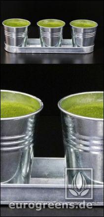 Zinktöpfchen-Set mit Steckmasse