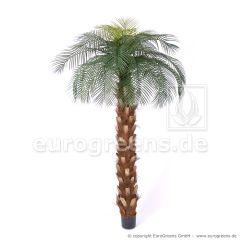künstliche Pindo-Palme DeLuxe ca. 220cm