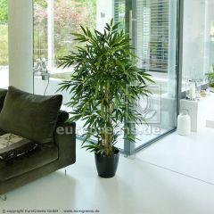 künstliche Pflanze: Jade Bambus ca. 170-180cm