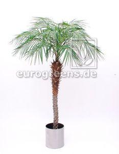 Kunstpflanze Phönix Palme ca. 180-200cm