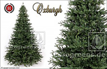 künstlicher Spritzguss Weihanchtsbaum Nobilistanne Oxburgh